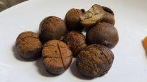 The Bone Season - Rephaim Chestnuts